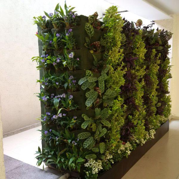 jardines y hortalizas verticales