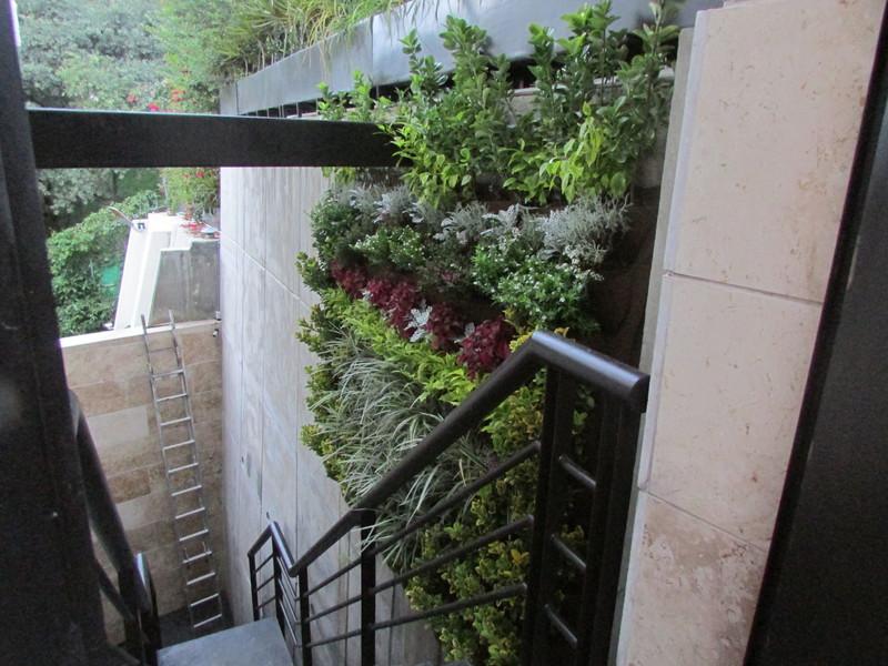 Jardines y hortalizas verticales for Jardines verticales precios